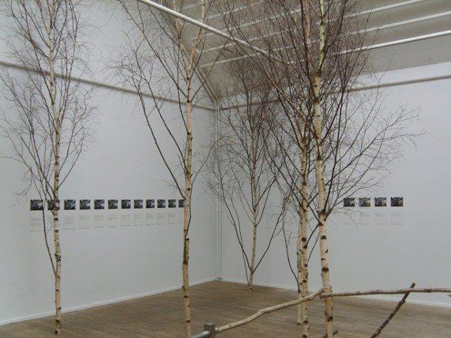 Installationsview. Foto: Søren Holmstrup.
