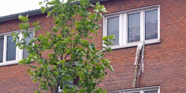Måske en vinduesudsmykning? (Foto: Line Møller Lauritsen)