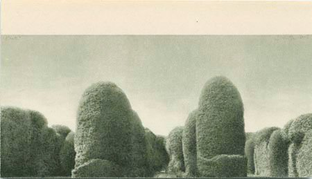 Svätopluk Mikyta: Hedge, 2008. Pressefoto.