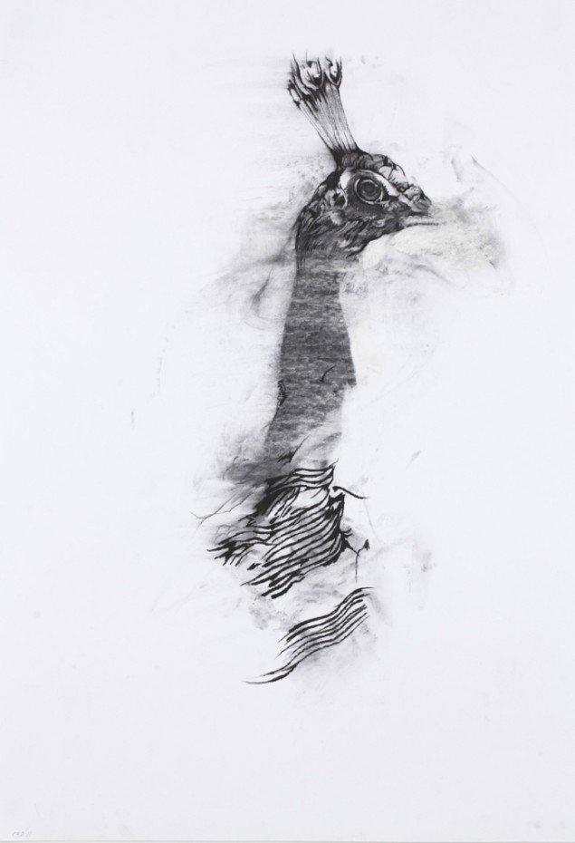 Cathrine Raben Davidsen: What happens if you really listen, 2011, 100 x 70 cm, kul på papir. Foto: Anders Sune Berg.