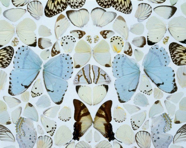 Damien Hirst: Sympathy in White Major - Absolution II (2006, detalje), © Damien Hirst and Science Ltd. DACS 2011. (Foto: Prudence Cuming Associates)