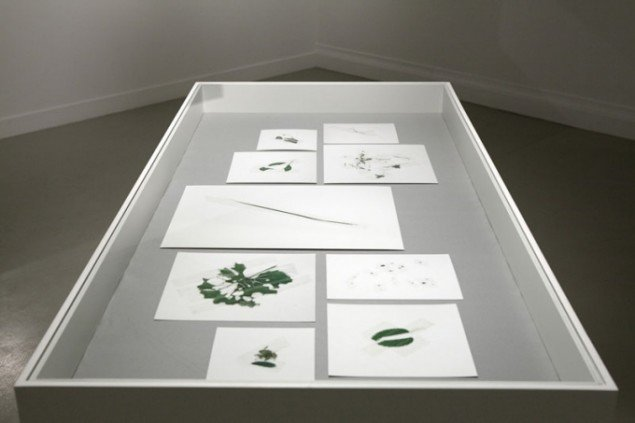 Installationsview, Node, Fotografins Hus. (Pressefoto)