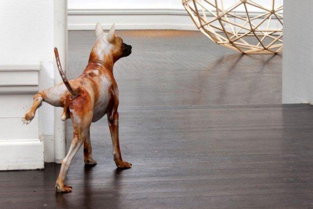 Att Pommtagon, A stray dog, 2012. Foto:Erilng Lykke-Jeppesen.