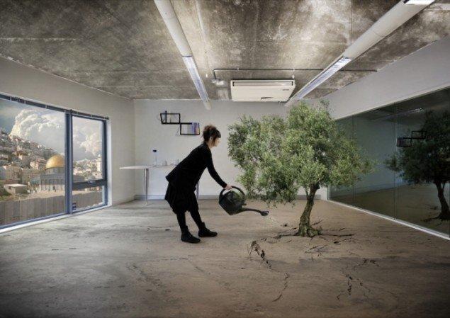 Nation Estate – Olive Tree, C-print, 42x59cm, Artist's Proof, Larissa Sansour, 2011. Pressefoto.