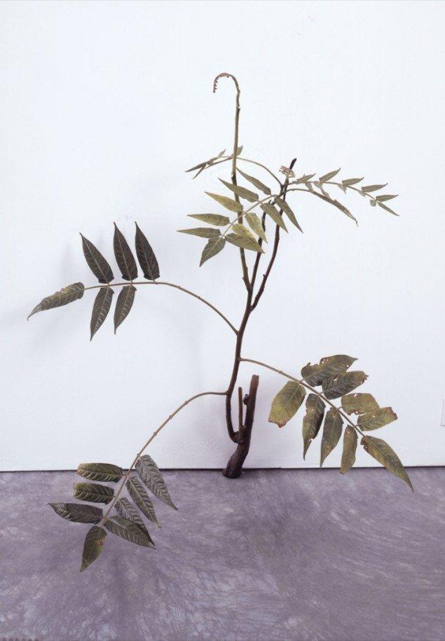 Successful Weed, 2006, bemalet bronze. Pressefoto: ARoS.