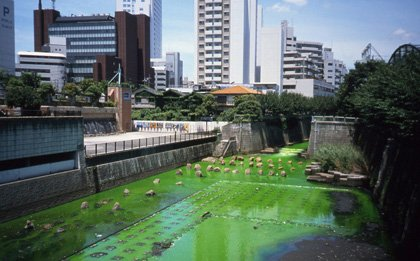 Green river, 1998, Olafur Eliasson. Tokyo, Japan, 2001. Courtesy Olaur Eliasson; neugerriemschneider, Berlin; and Tanya Bonakdar Gallery, New York.