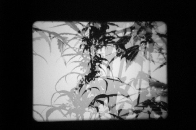 The Hashish Club (2009), 16 mm film and black/white photo installation. Courtesy: Galleri Nicolai Wallner, Copenhagen, DK. Foto: Anders Sune Berg.