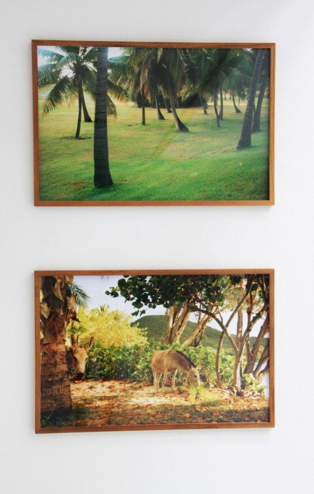 Nanna Debois Buhl Donkey Studies, 2008. Pressefoto