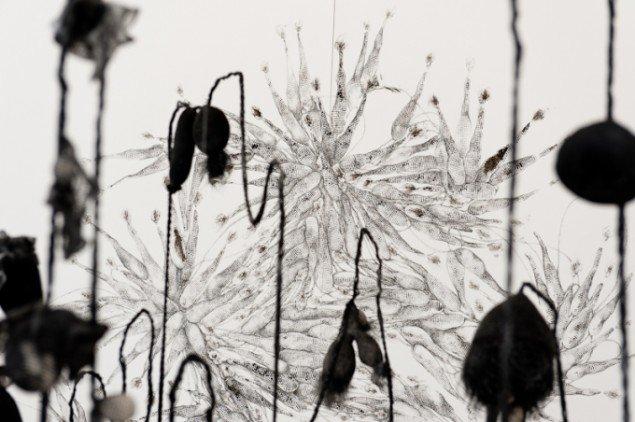 Nærbillede fra Kate Skjernings udstilling på Janus Bygningen. Foto: Niels Linneberg