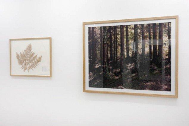 Værker af Ismar Cirkinagic. Foto: Erling Jeppesen