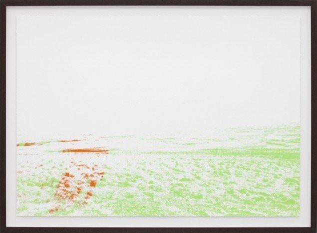 Organisches Detail und Lärm, 2012, silketryk. Pressefoto.