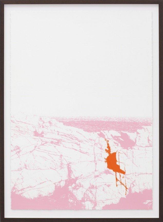 Organisches Detail und Lärm, 2012, silketryk, 152,5 x 112 cm. Pressefoto.