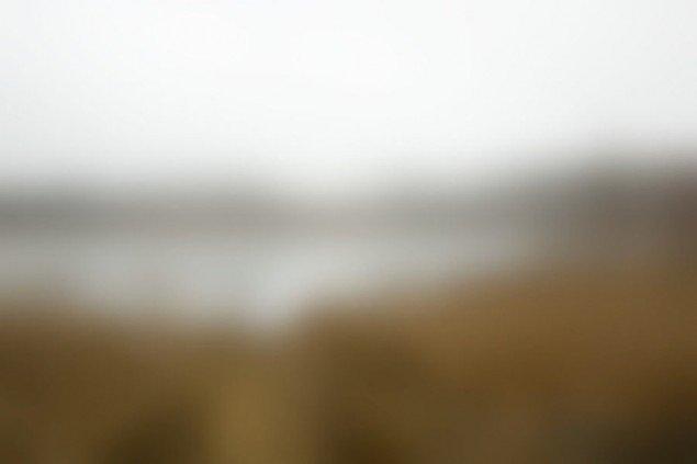 Danmark under forvandling, Denderupvej, oktober 2009 - midt på dagen, 2008-2009, 40 print på bomuldspapir, hvert billede måler 42 x 59,3 cm., edition på 8. Pressefoto.