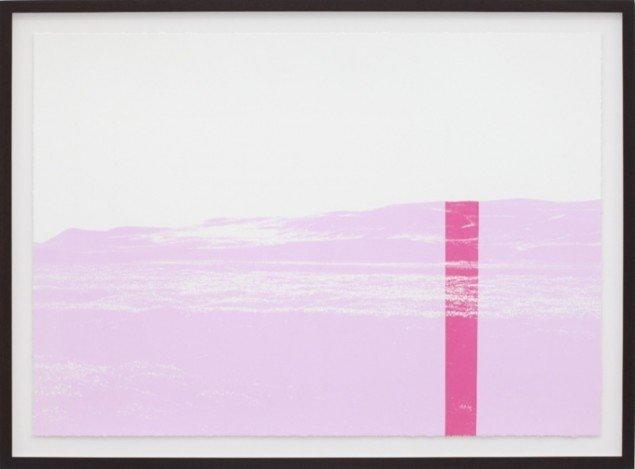 Organisches Detail und Lärm, 2012, silketryk, 112 x 152,5 cm. Pressefoto.