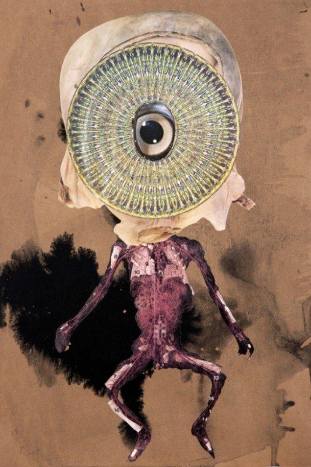 David Dellagi: Some Infant Demi-God or Other, 2012. Pressefoto