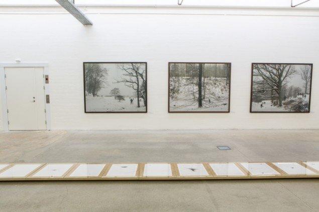 På væg værker fra jagtserien How to Hunt. Fra venstre Paradis Såten, 2010; Lille Sommerlyst, 2010 og Hans Jørgens Lykke, 2010. 160 x 200 cm. På gulvet 12 værker fra fotogravuren Dying Bird, 2010. 46 x 55 cm. Foto: