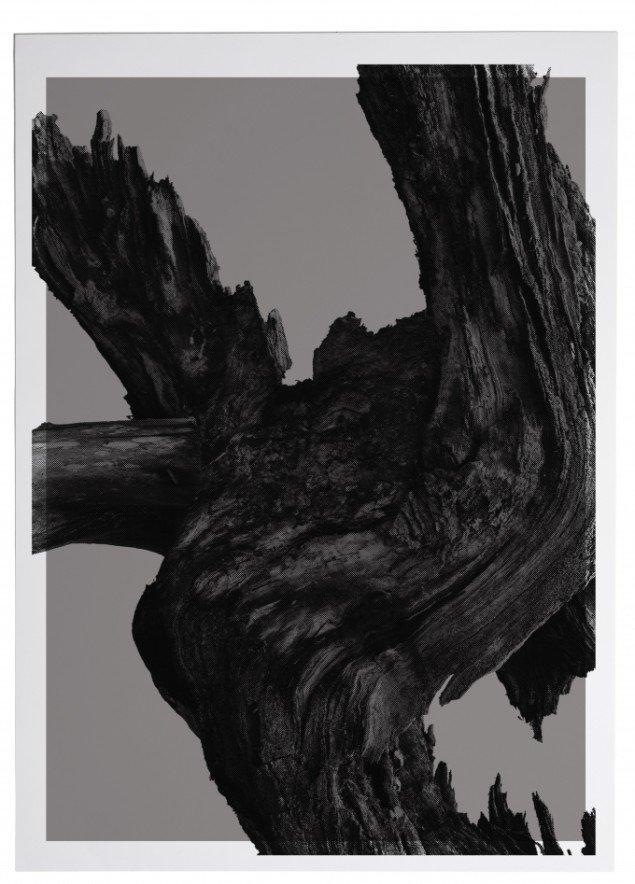 Fra serien Megafossil. Foto: Nicolai Howalt og Trine Søndergaard, Courtesy Martin Asbæk Gallery