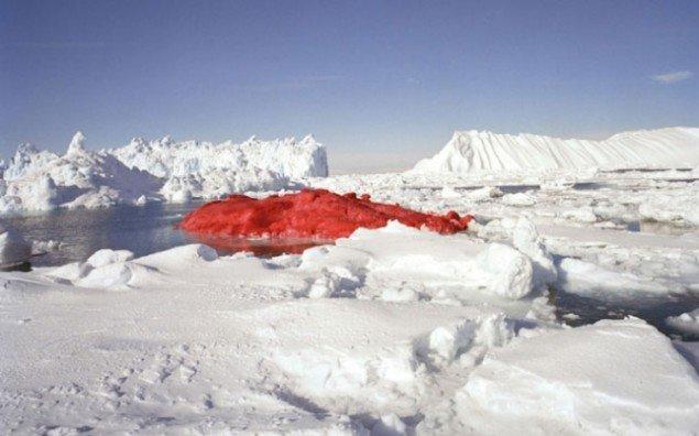 I 2004 malede Evaristti et isbjerg rødt i Grønland. Herefter oprettede Evaristti den uafhængige stat Pink State. Et land baseret på tre enkle værdier: Man skal være god ved sig selv, god ved andre og god ved naturen. Foto: Marco Evaristi / Hans Ole