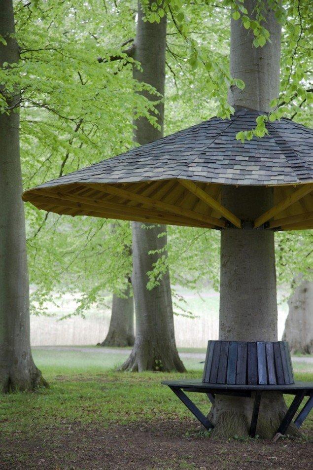 Randi og Katrine: Pavillontræ. Foto: Miriam Nielsen