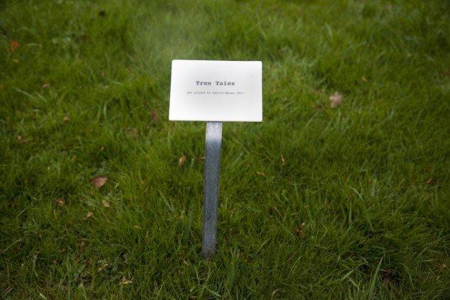 Camilla Berner: Tree Tales. Foto: Miriam Nielsen