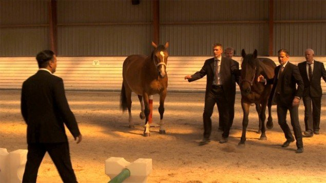 Marika Seidler: Still fra With horses.