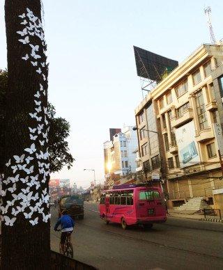 Nepalesiske Milan Rais sommerfugle kommer også til at invadere København. (Pressefoto)