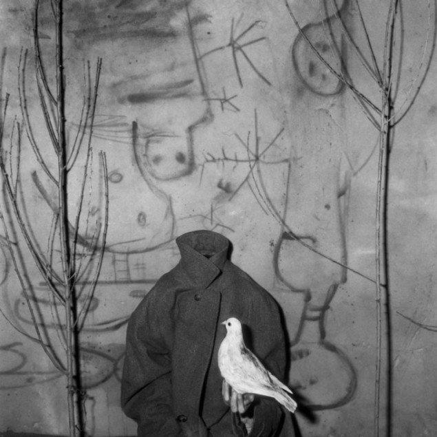 Headless, Roger Ballen, 2006.