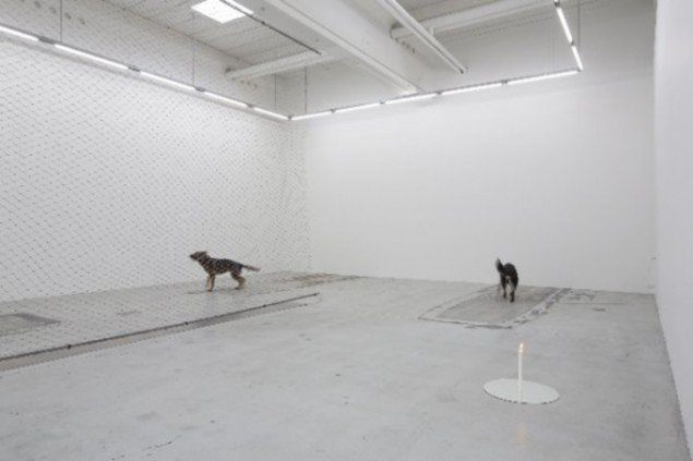Installation view, COPENHAGEN 93 (August 2013). (Foto: Anders Sune Berg, © Galleri Nicolai Wallner)