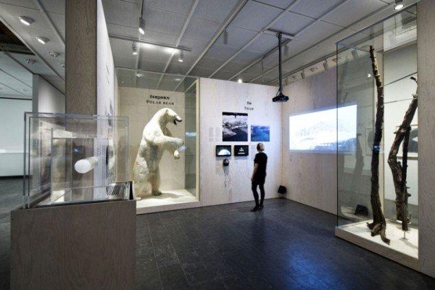 Et af udstillingens zoologiske-geologiske displays. Arktis, Installation shot, Louisiana Museum of Modern Art (Foto: Ty Stange)