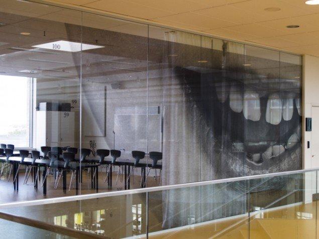 Nanna Debois Buhl Anatomisk Atlas 2013, offentlig udsmykning, Campus Roskilde, samarbejde m. Henning Larsens Tegnestue og Statens Kunstfond. Foto: Jimmy Buhl
