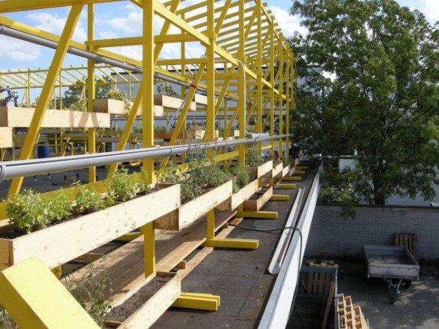 Arkitekt Carsten Hoff og kunstner Nis Rømer har bygget en nyttehave på taget af bazaren. Foto: Matthias Hvass Borello