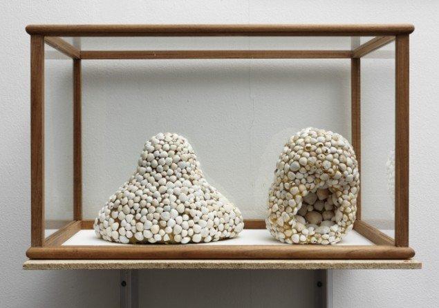 Emil Westman Hertz Vitrine, 2011. Bramsø strandskaller, voks, træ, glas, 38x62x38 cm. Foto: Anders Sune Berg