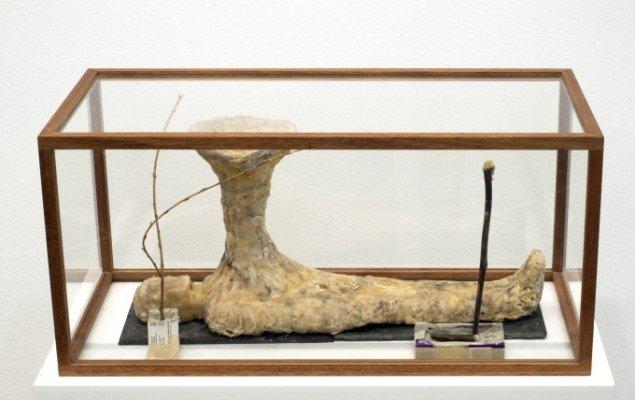 Emil Westman Hertz Forever Altered, 2012. Bivoks, pilleæsker, grene, 33x70x33 cm. Foto: Galleri Susanne Ottesen