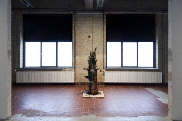 Installationsview fra The Forest. Foto: Morten Barker