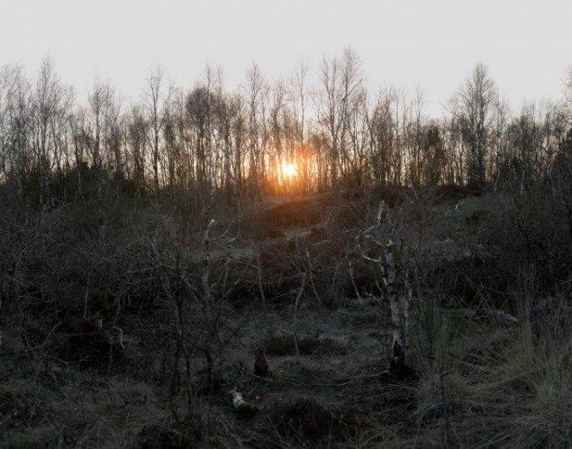 Morten Barker:  Sun Setting over Hevring Shooting Range  2011, 140x110 cm, 3 mm dibond.