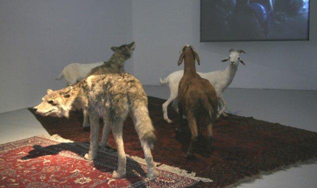 Får og ulve ser på halal-slagtning i værket Wolves and sheep watching the Aïd el Kebir video, Huang Yong Ping 2006. Foto: Maja Egelund