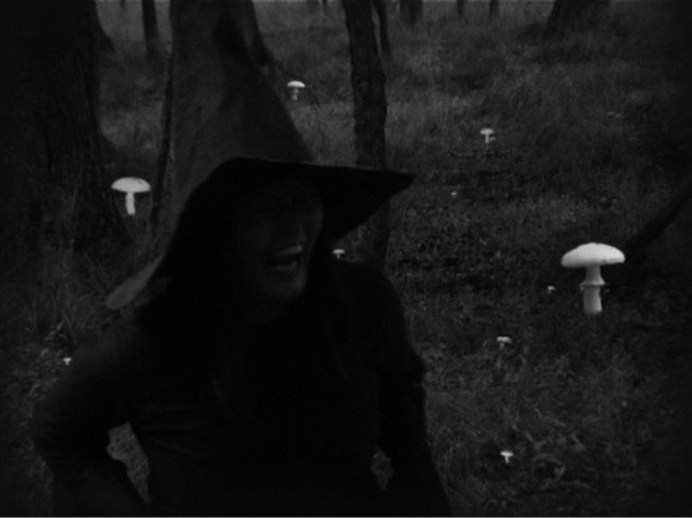 Rikken Benborg: Still fra When you see a witch in the forest who is imagining who?  2001/2007