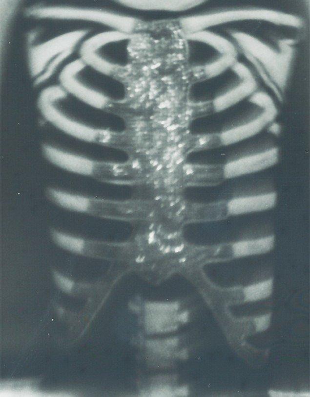 Rikke Benborg: Polaroid fra serien On death and delight 2012, 40x31 cm