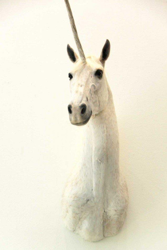 Eva Tind: Bevis, 2014. Udstoppet hest m. afstøbt horn af plastik. På Panorama, Traneudstillingen 2014. Foto: Aukje Lepoutre Ravn