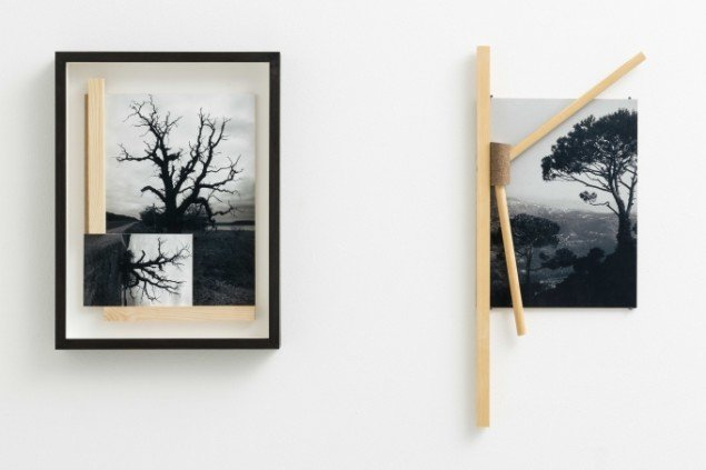 Jytte Høy: Between Trees #1 og #2 . Begge 2014. S/H Foto, træ, mdf plade. Foto: Anders Sune Berg