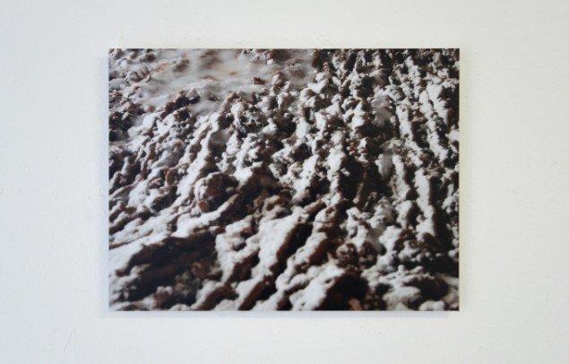 Dagmar Krøyer: Nature Torte, Vinter-plovfurer i chokoladekage, 2014. Lambda-print. Foto: Anne Skole Overgaard