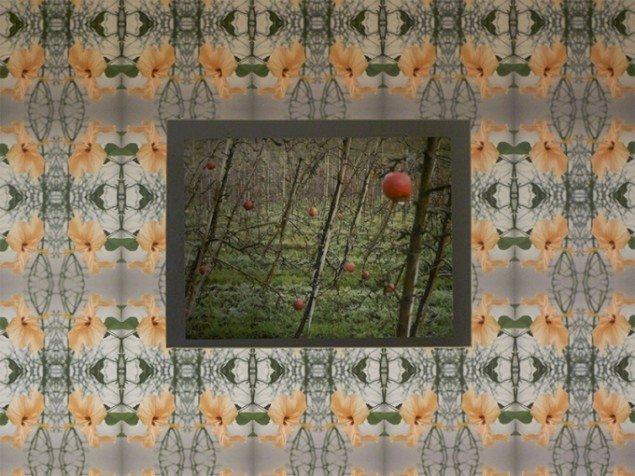 Værket Æbleplantage set gennem et vindue i huset. Tapet: Filigran Foto: Bodil Sohn