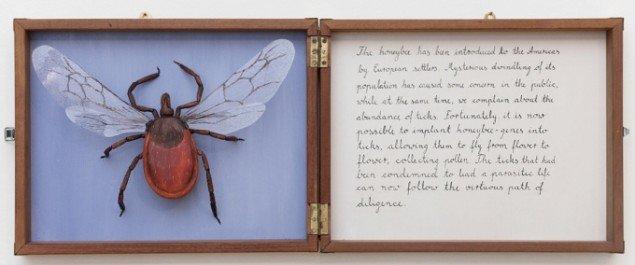 Hartmut Stockter: Honeytick 2013, træ, plastikglas, oliemaling, blæk. I trækasse, 118x46 cm. Foto: Hartmut Stockter/LARMgalleri