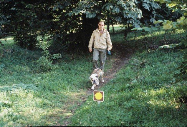 Camilla Berner: Mælkebøtteruten, 2003. En markering af alle trampestier i Søndermarken med skilt og tilhørende guidekort. Foto: Camilla Berner