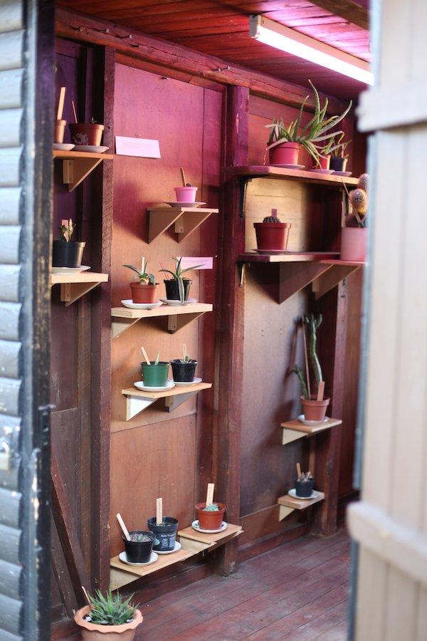 Camilla Berner: Bakkedraget og Venner, 2009. En udveksling af kaktusplanter og stiklinger i lokalmijøet, og samtidig en kortlægning af det sociale liv i Herlev. Realiseret til Instant-Herlev. Foto: Camilla Berner