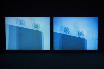 På Venedig Biennalen i 2005 og den efterfølgende udstilling på Museet for Samtidskunst i Roskilde præsenterede Villesens dokumentariske videoværk: I Capture You, You Capture Me (still fra værket).