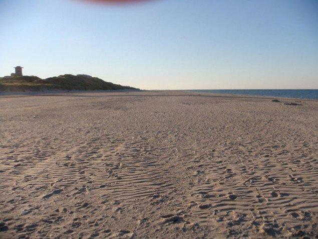 Blåvand strand. Foto: Stan Coenders