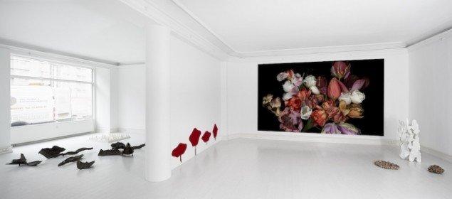 Billede af udstillingen Chambre Ornementale. Galerie Mikael Andersen, 2014. Foto: Jan Søndergaard.
