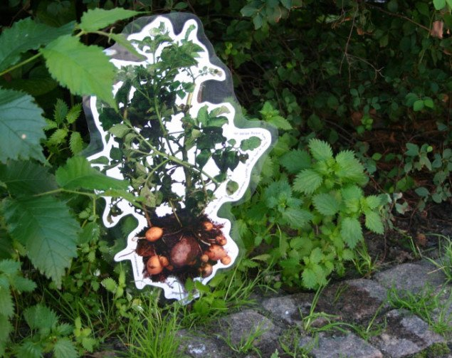 Marie Markmans 1m2x298.501 er  rykket ud i Mølleparken. Foto: Anja Møller Pedersen