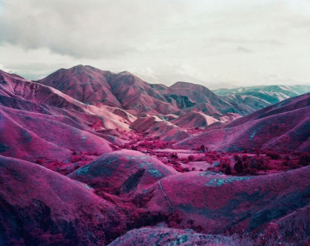 Richard Mosse: Nowhere To Run, 2010 Digital c-print. (Courtesy of the artist, Jack Shainman Gallery / carlier ǀ gebauer)